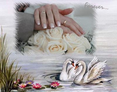 Тема свадьба